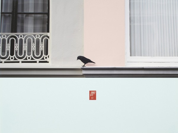 Cornelia Baltes, 'Untitled (bird)', 2010