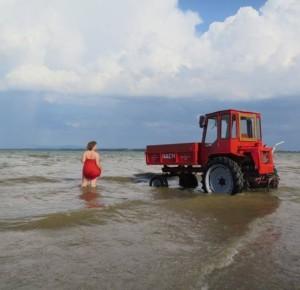 Элизабет Фалькингер, Трактор