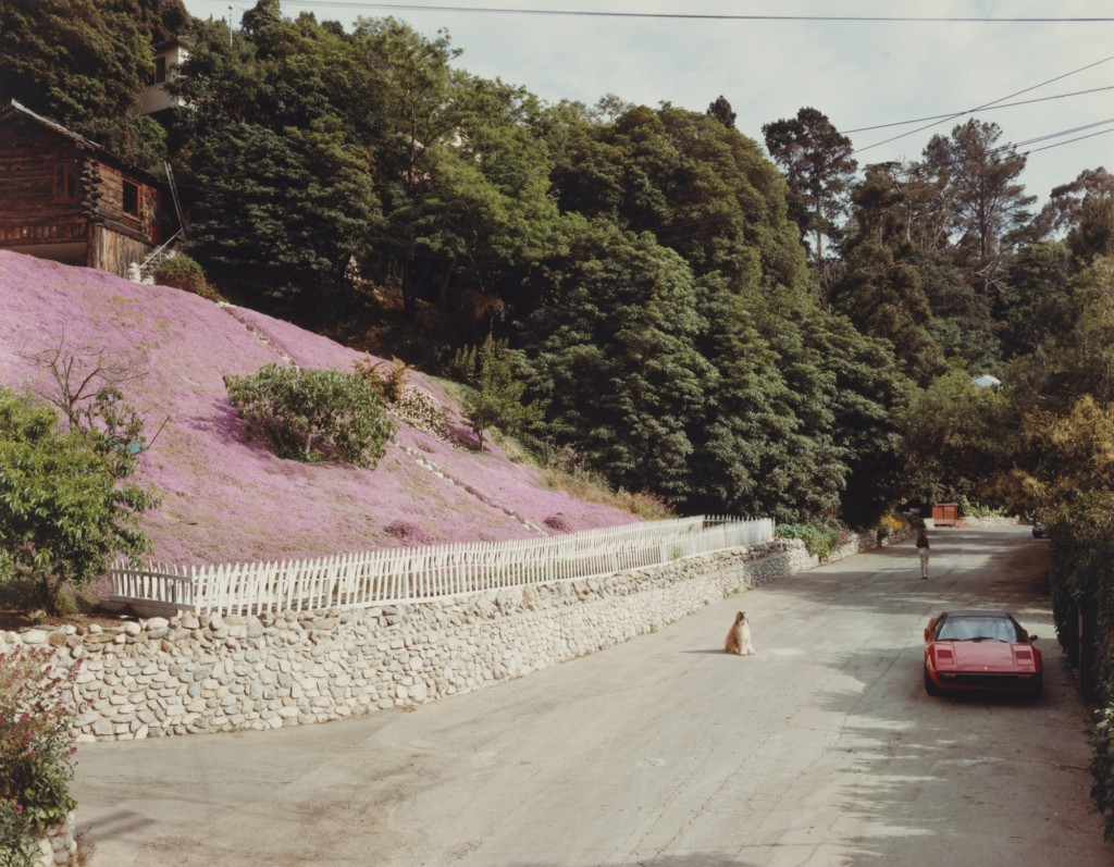 Rustic Canyon, Santa Monica, California, May 1979