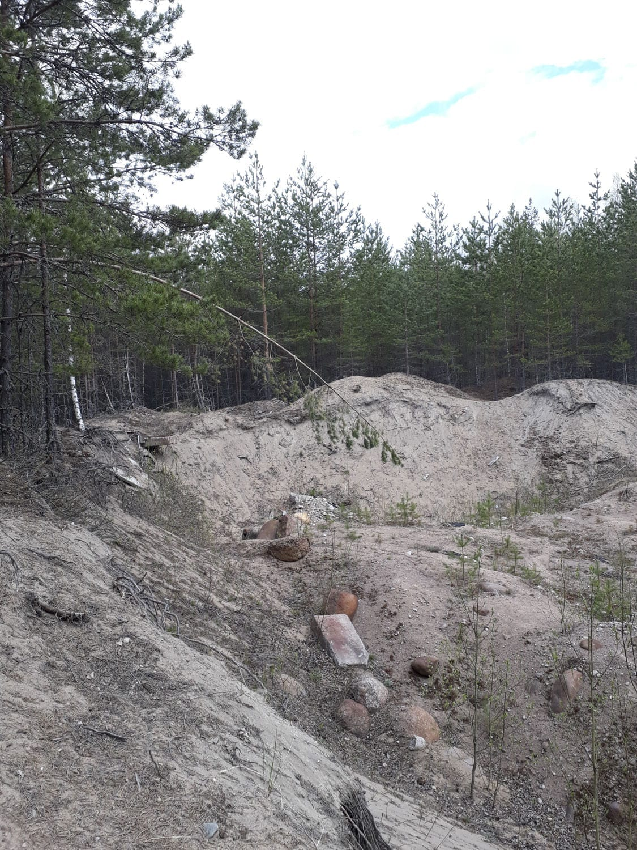 bogolepov-rogalev-lenobl_10