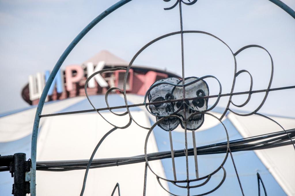 Партия мертвых, «Некроциркеннале», 2021. Перформанс на Красненьком кладбище 5 августа. Фото Александр Данилов.