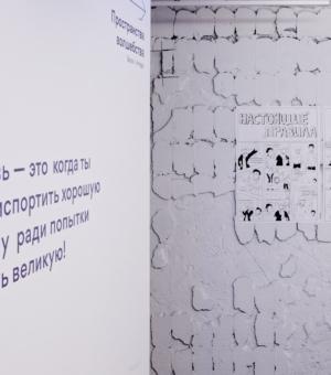 1_Общий вид экспозиции_Настоящие правила посещения выставки от Канарейки